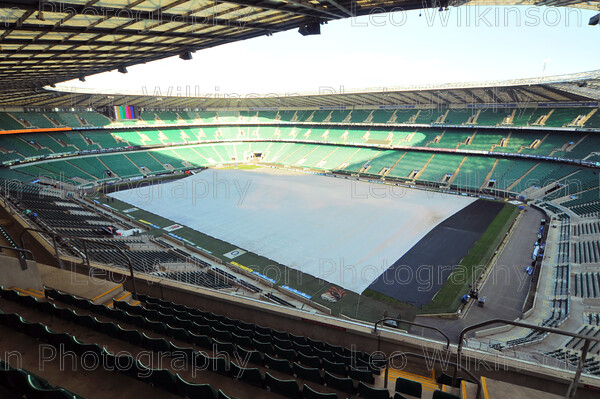 Frost Cover2 